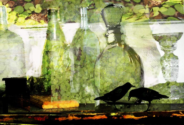 Bottles on Table with Fern
